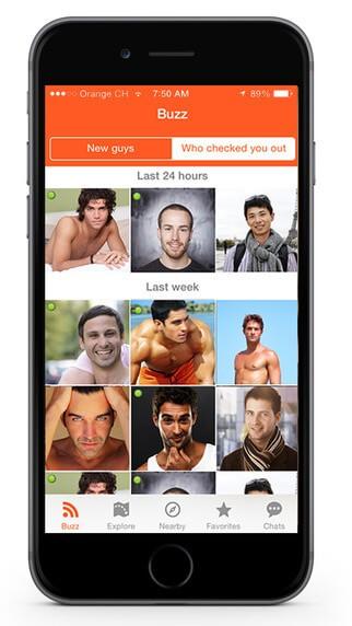 Gay App Hornet